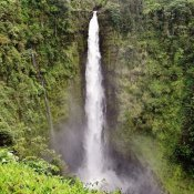 Akaka Falls is one of the most dramatic waterfalls in Hawaii.