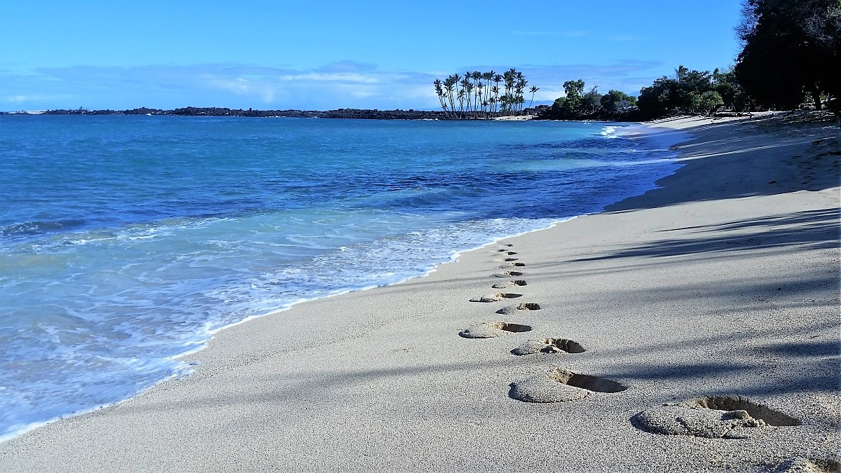 Fresh tracks on Mahai'ula Beach, Big Island Hawaii