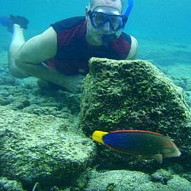 Snorkeling Big Island at Kahalu'u Beach Park