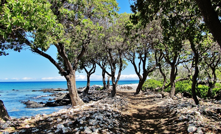 Ala-Kahakai National Historic Trail