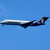 Best Flights To Hawaii