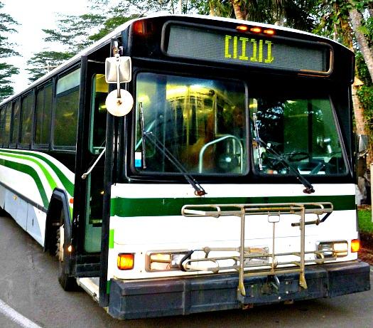 Big Island Transportation Options