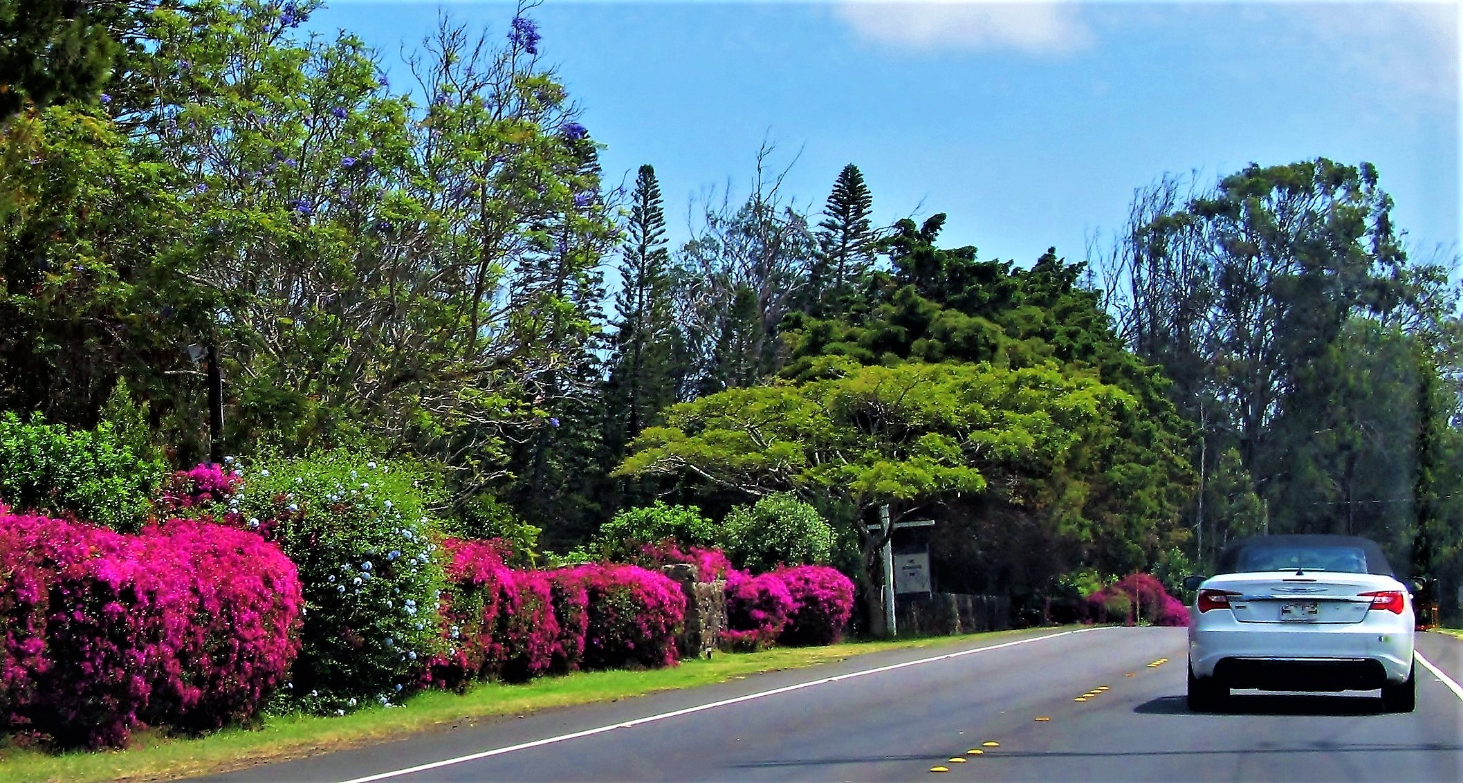 Travel In Hawaii - Saddle Road