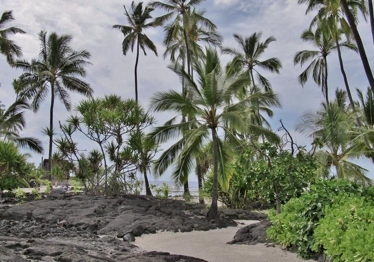 Pu'uhonua o Honaunau City of Refuge