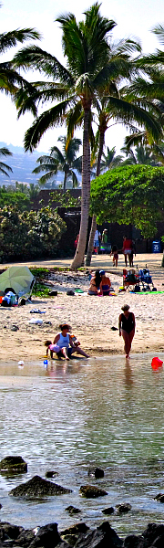 Family friendly Big Island beaches offer quiet pools for wading with protection from surf.