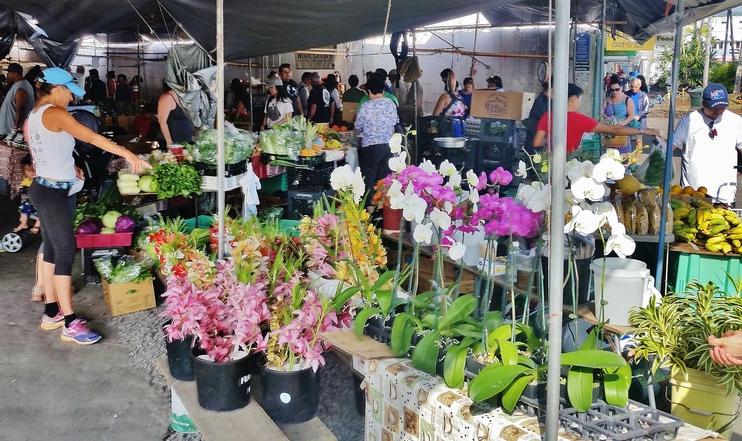 Farmers Market in Hilo, Hawaii