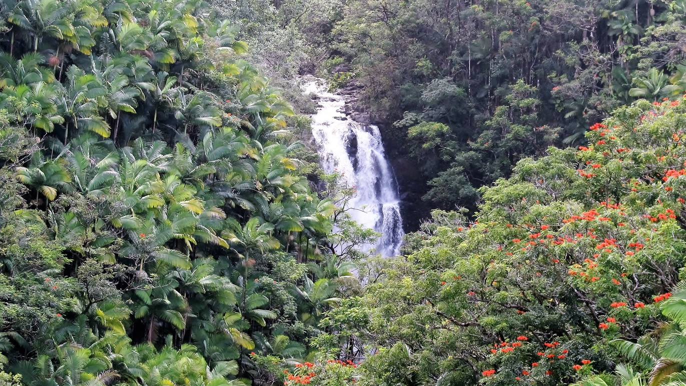 Hamakua Coast waterfalls