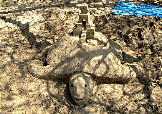 Sand castle turtle at Waialea Beach 69