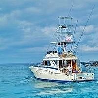 Hawaii Sport Fishing