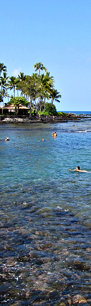 Kahalu'u Beach Park has excellent snorkeling. Picnic tables, pavilion, and snorkel gear can be rented right at the beach.