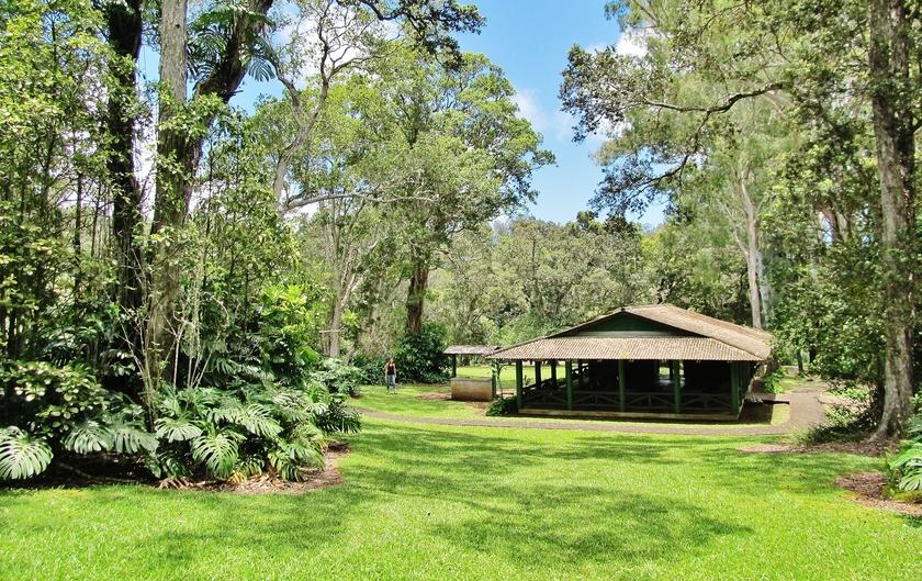 Kalopa State Recreation Area