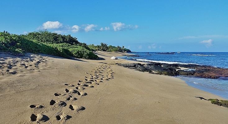 Kapalaoa Beach, Big Island