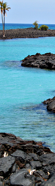 Stunning turquoise waters of Kiholo Bay - great swimming and lots of Honu
