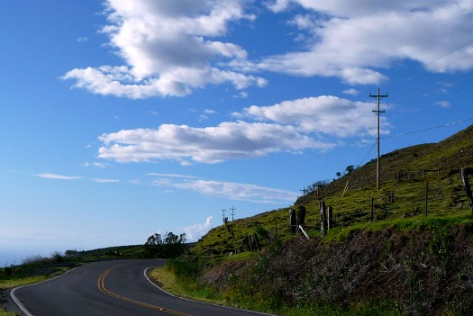 The scenic Kohala Mountain Road winds around the side of Kohala Volcano from Waimea to Hawi on the Big Island of Hawaii.