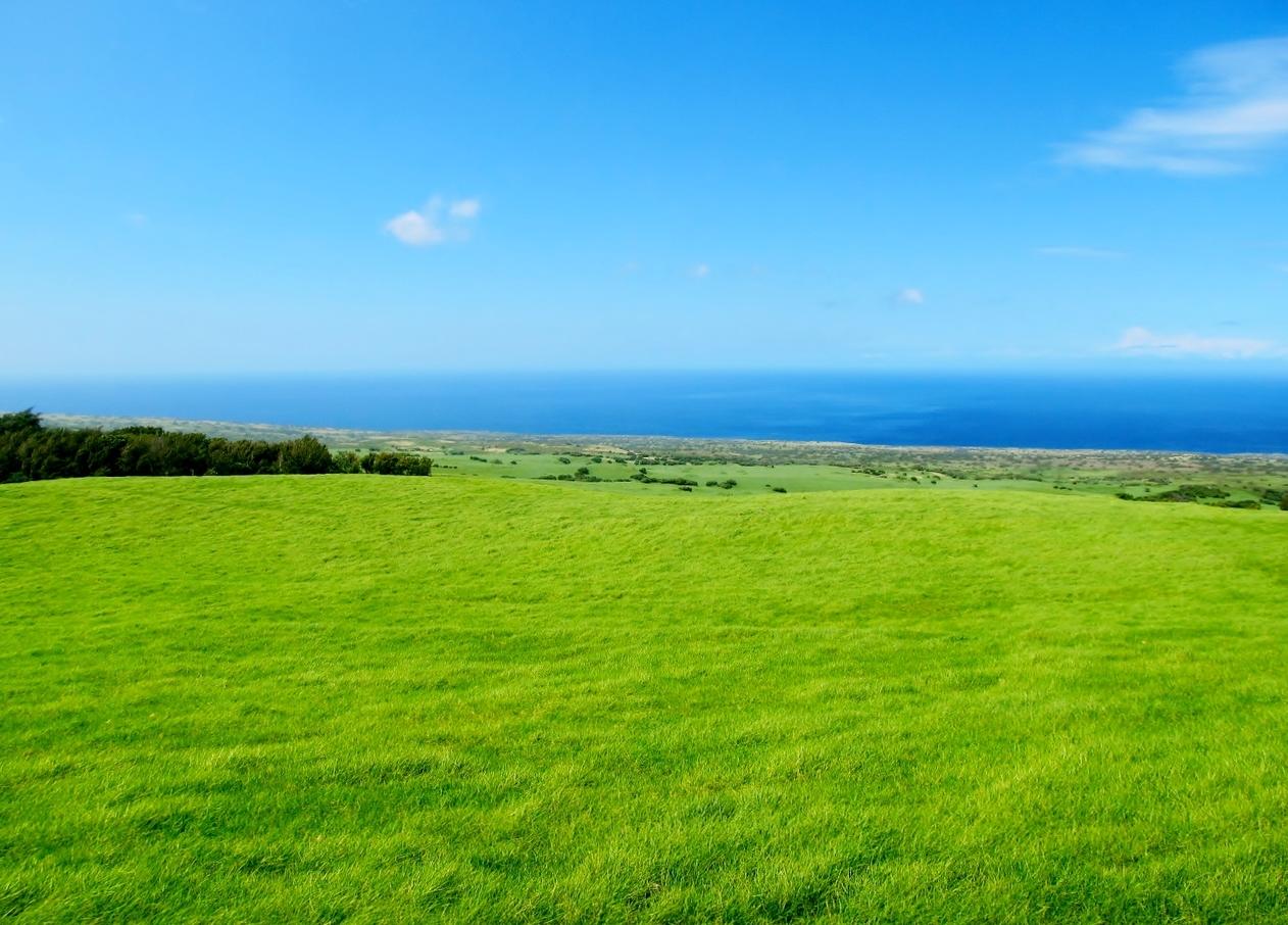Beautiful views across grassy slopes along Kohala Mountain Road.