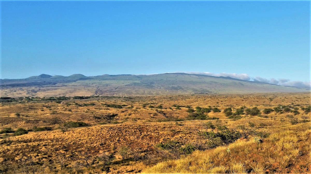 West flank of Kohala volcano