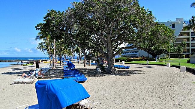 Mauna Lani Bay Hotel beach