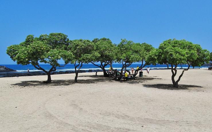 Things to do on the big island of hawaii