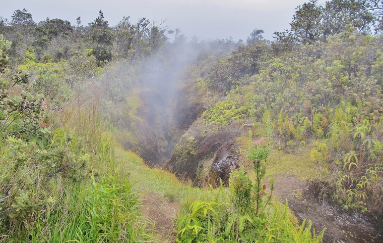 Steam vents, Hawaii Volcanoes National Park