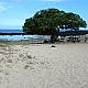 Family friendly Wawaloli Beach