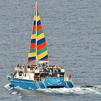 Big Island Deluxe Snorkel Tour
