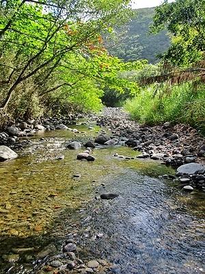 Honokane Nui Valley