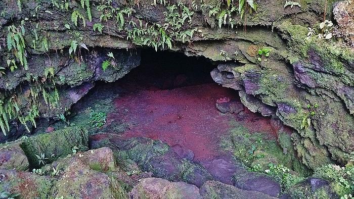 Lava tube at Kaumana Caves