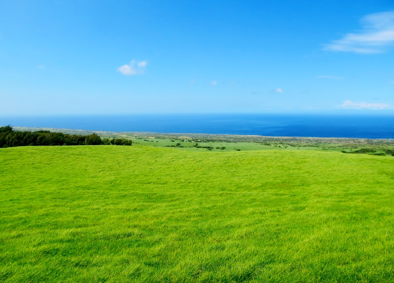 Beautiful views across grassy slopes along Kohala Mountain Road.